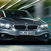 BMW 4 Series (Coupe)