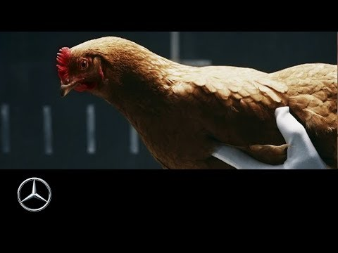 Mercedes-Benz TV: MAGIC BODY CONTROL TV commercial Chicken
