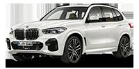 BMW New X5 2019 디젤 3.0 xDrive 30d xLine (A/T)