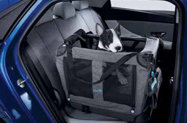 [H Genuine Accessories] PET ISOFIX 카 시트이미지