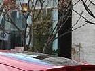2016 닛산 370Z 시승기